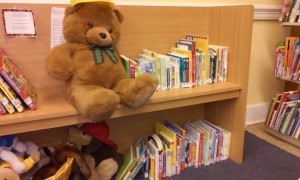 Our Library Mascot, Einstein the Bear